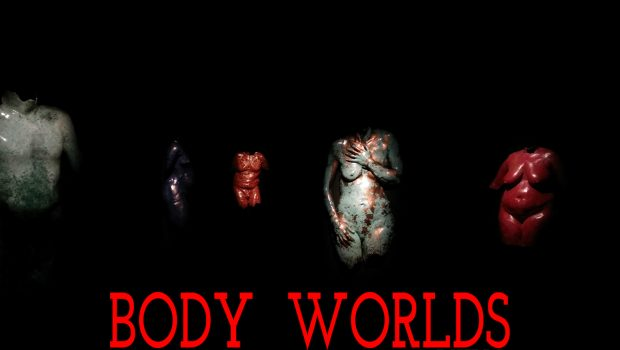 BODY WORLDS in Calgary: Vital, at Telus Spark