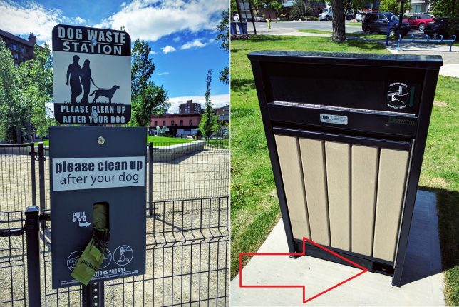 Connaught Dog Park Poop Waste