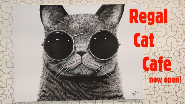 A Compelte Guide to Regal Cat Cafe in Calgary