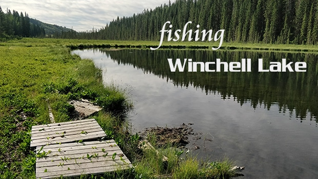 Fishing in Alberta: Winchell Lake