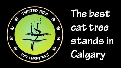 Twisted Tree Pet Furniture makes really good cat tree stands