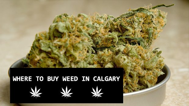 Where to buy marijuana / cannabis / weed in Calgary