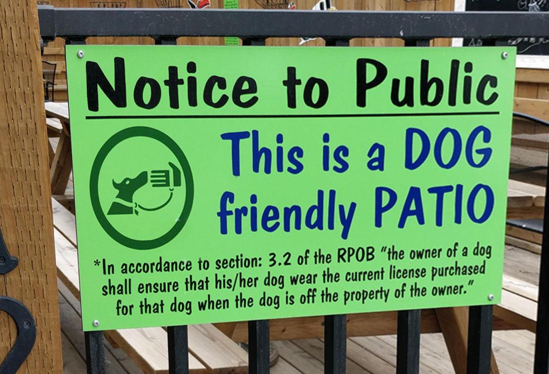 dog friendly patios in Calgary