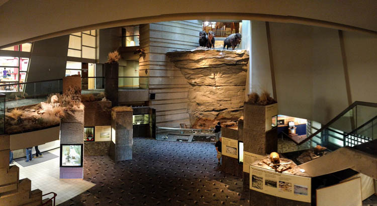 Head-Smashed-In Buffalo Jump Museum Inside