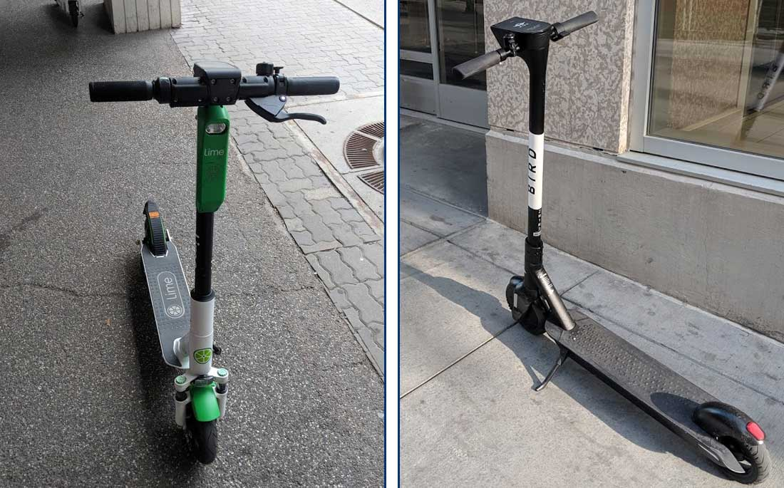Lime and Bird Scooters in Calgary