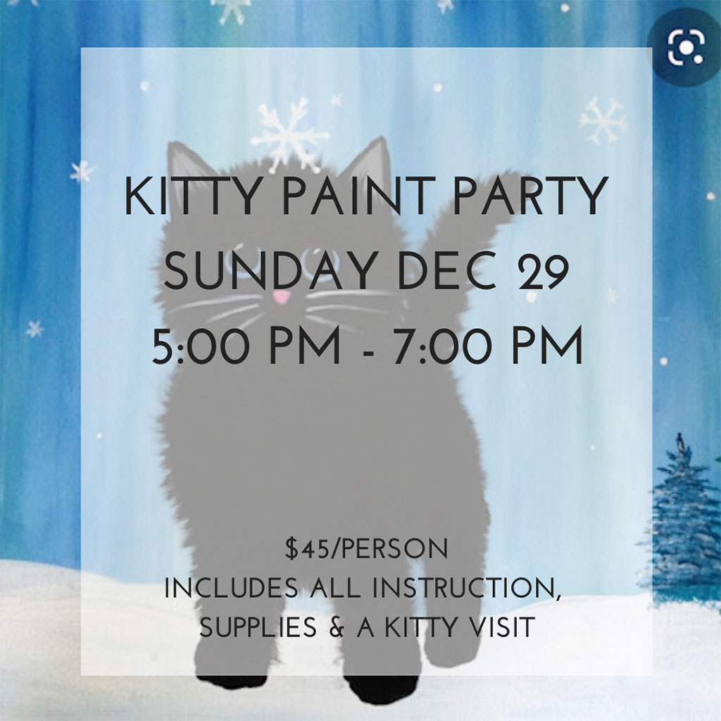 Last Minute Calgary Christmas Gift Guide 2019 Regal Cat Cafe